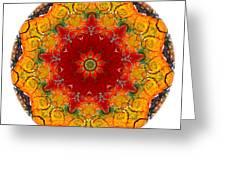 Talisman 2909 Greeting Card