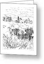 Tall Aspens Rocky Mountains Greeting Card