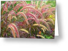 Tall, Colorful, Whispy Grasses In The Sumer Breeze Greeting Card