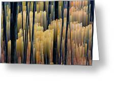 Tall Forest 2 Greeting Card