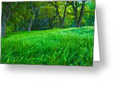 Tall Grass At Twilight Greeting Card