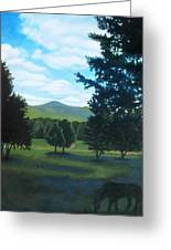 Tall Pines Surround Your Green Hills Greeting Card