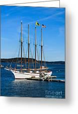 Tall Sailboat In Acadia Greeting Card