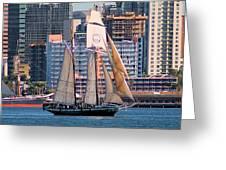 Tall Ship In San Diego  Greeting Card