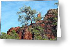 Tall Trees And Rocky Spires Greeting Card
