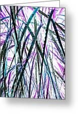 Tall Wet Grass Greeting Card