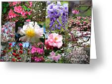 Tallahassee Springtime Collage Greeting Card