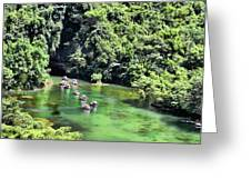 Tam Coc Boats On Ngo Dong River  Greeting Card