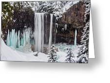Tamanawas Falls 1 Greeting Card