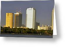 Tampa And Bayshore Greeting Card