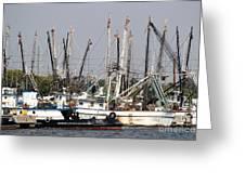 Tampa Shrimp Boats Greeting Card