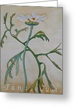 Tanacetum Greeting Card