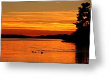 Tangerine Dream Greeting Card