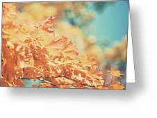 Tangerine Leaves And Turquoise Skies Greeting Card