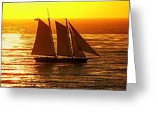 Tangerine Sails Greeting Card