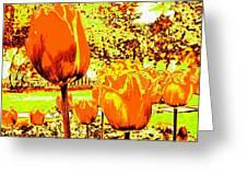 Tangerine Tulips Greeting Card