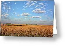 Tanner Farm Greeting Card