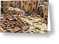 Tanneries Of Fes Morroco Greeting Card