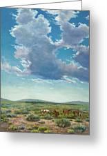 Taos Mustangs Greeting Card