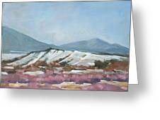 Taos Red Willows Greeting Card