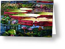 Tapestry Of Color And Light Greeting Card
