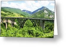 Tara River, Montenegro Greeting Card