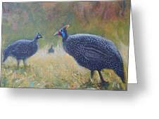 Tarantale - Guinea Fowl Greeting Card