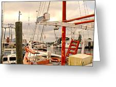 Tarpon Springs Harbor Greeting Card