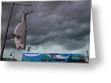 Tarpon Springs Thunderstorm Greeting Card