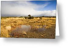 Tasmanian Storm  Greeting Card
