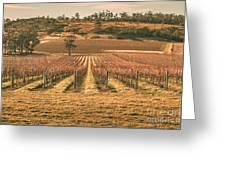 Tasmanian Winery In Winter Greeting Card