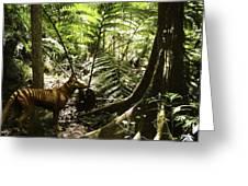 Tasmanian Wolf In Forest Greeting Card by Christian Darkin