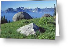1m4862-tatoosh Range And Mt. St. Helens  Greeting Card