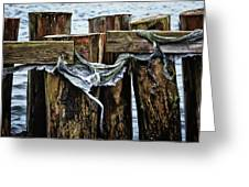 Tattered And Torn Greeting Card