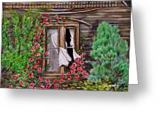 Tattered Curtains Greeting Card