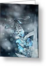 Tattered Wings B2 Greeting Card
