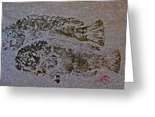 Tautog With Shadow Greeting Card