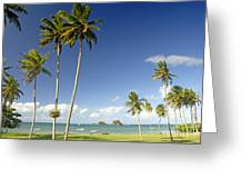 Taveuni Shoreline Greeting Card