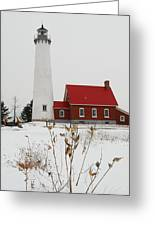Tawas Point Lighthouse Greeting Card by Michael Peychich