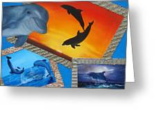 Taylors Dolphins Greeting Card