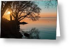 Teal And Orange Morning Tranquility With Rocks And Willows Greeting Card