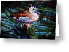 Teal Duck Of Naples Greeting Card