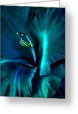 Teal Gladiola Flower Greeting Card
