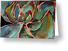 Teal Pink Succulent Greeting Card