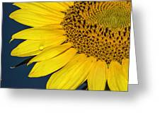 Tear Of The Sun Greeting Card
