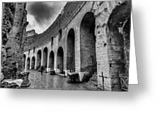 Tears Of Rain At Coliseum Greeting Card