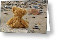 Teddy On A Beach Greeting Card