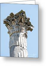 Temple Of Ceres Greeting Card