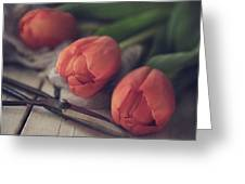 Tending The Tulips Greeting Card