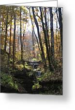 Tennessee Falls Greeting Card